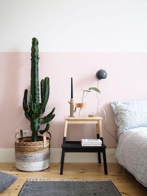 Outstanding Bedroom Cactus Plant