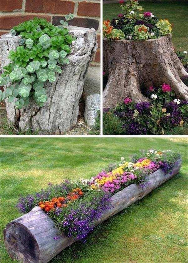 tree trunk flower bed