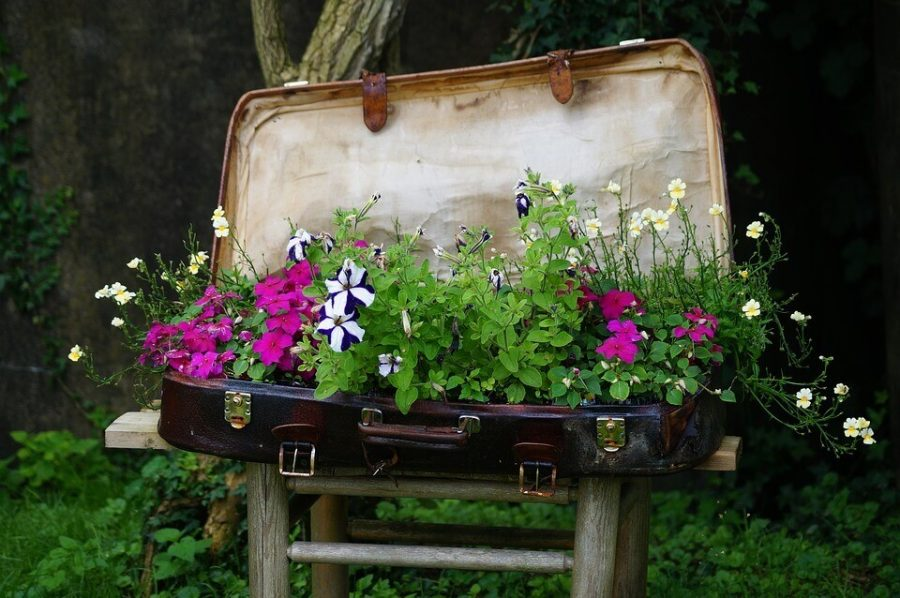 Vintage Suitcase Flower Bed