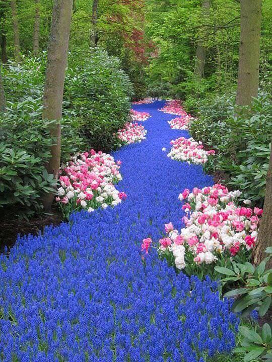 River Backyard Flower Bed Ideas
