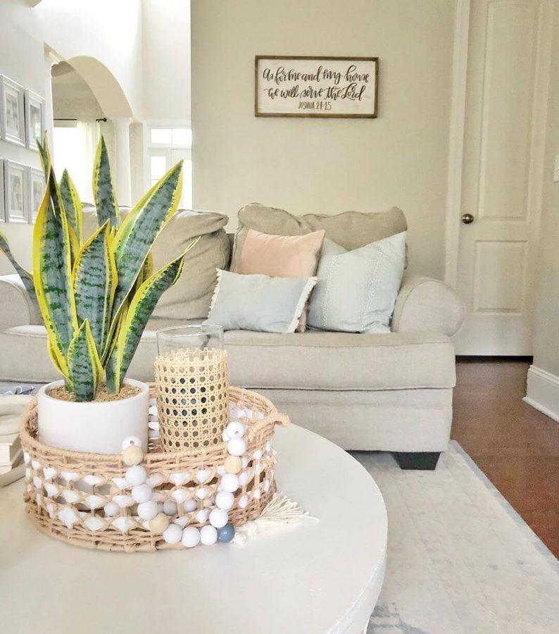 Scandinavian-themed on the Go - coastal living room decor