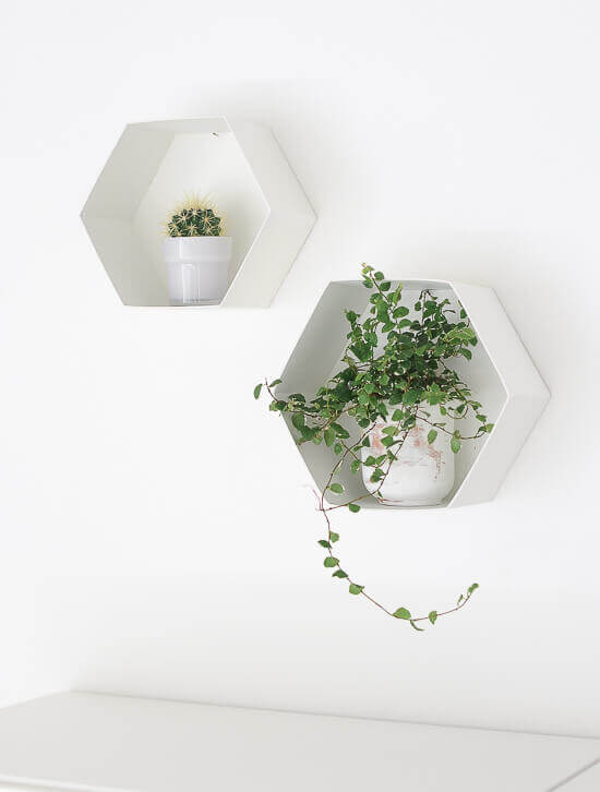 Hexagon Wall Shelves