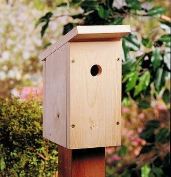 Scrap Wood Birdhouse
