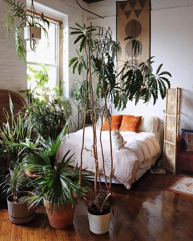 Welcome to the Jungle - Boho Style Bedroom