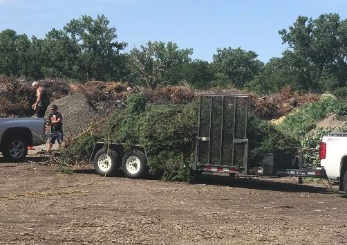 Take Grass Clipping to Local Disposal Site