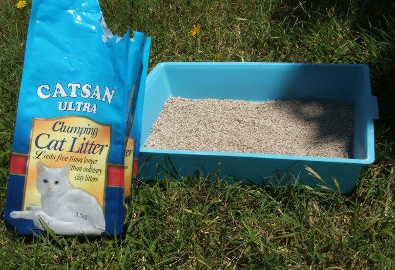 Cover mud with cat litter