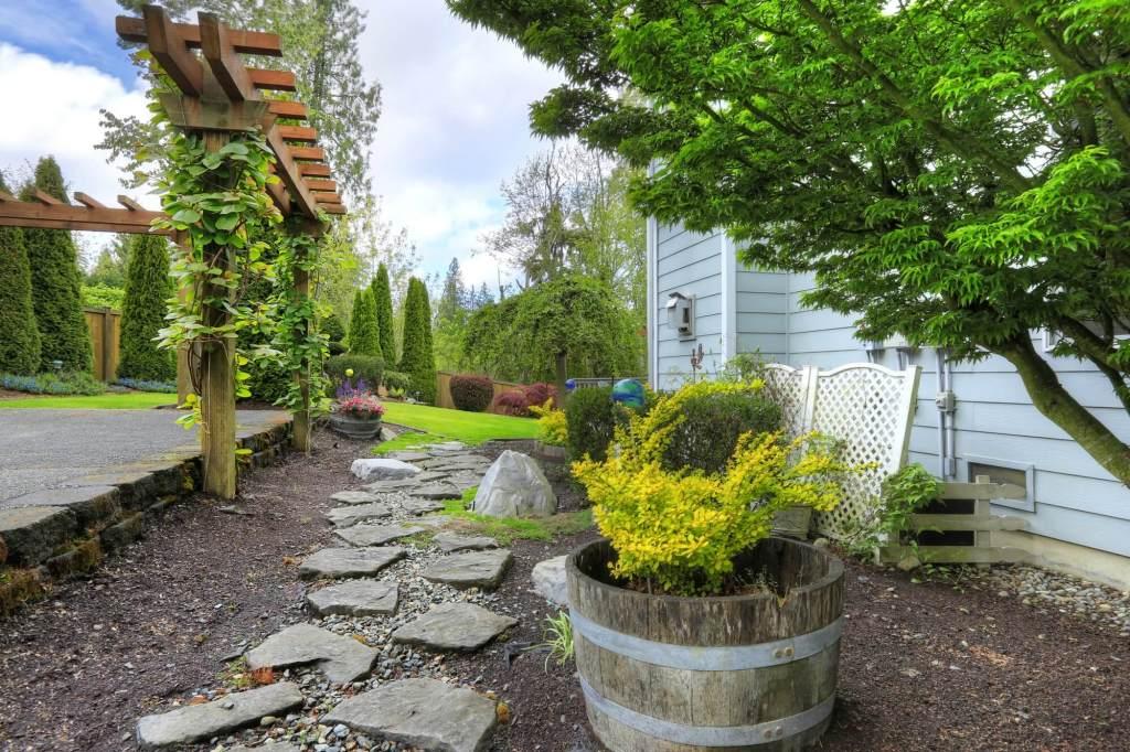 Simple Backyard Idea with Pergola