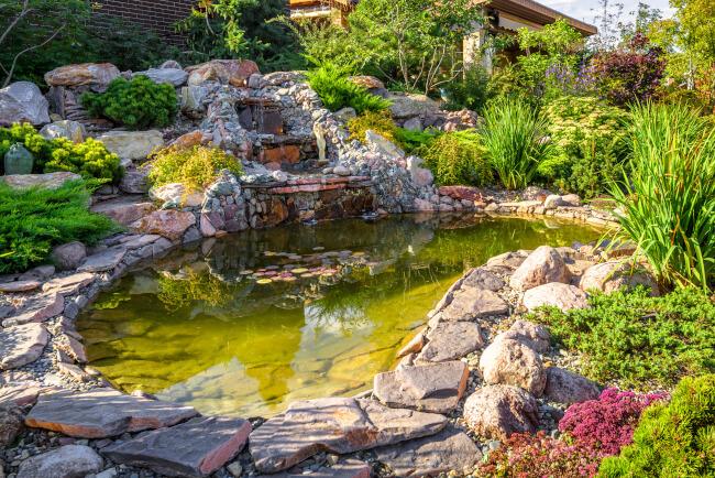 Natural Fish Ponds Full of Rocks