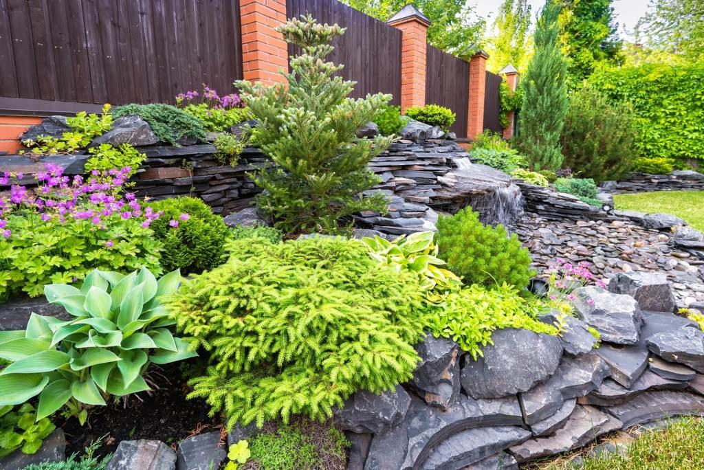 Rock Landscaping Idea