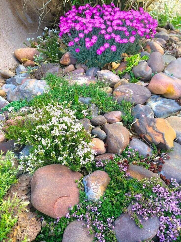 Rustic Rockeries - Desert landscaping ideas